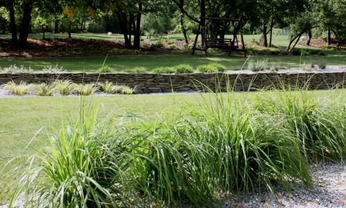 trawy w ogrodzie